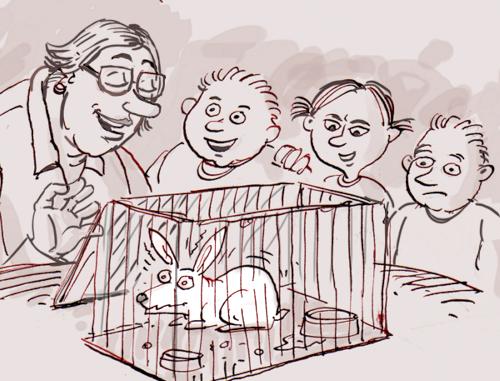 la classe élève un lapin