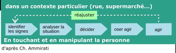 schéma de Ch. Ammirati
