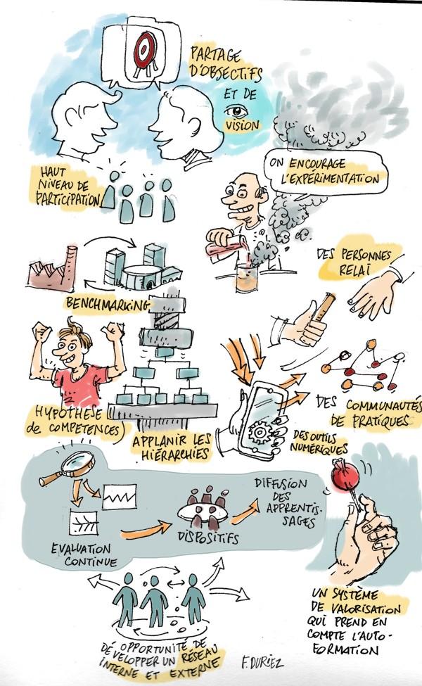 Amaury Grimand - les caractéristiques de l'organisation apprenante