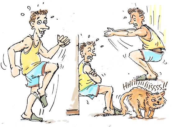 sport en sept minutes